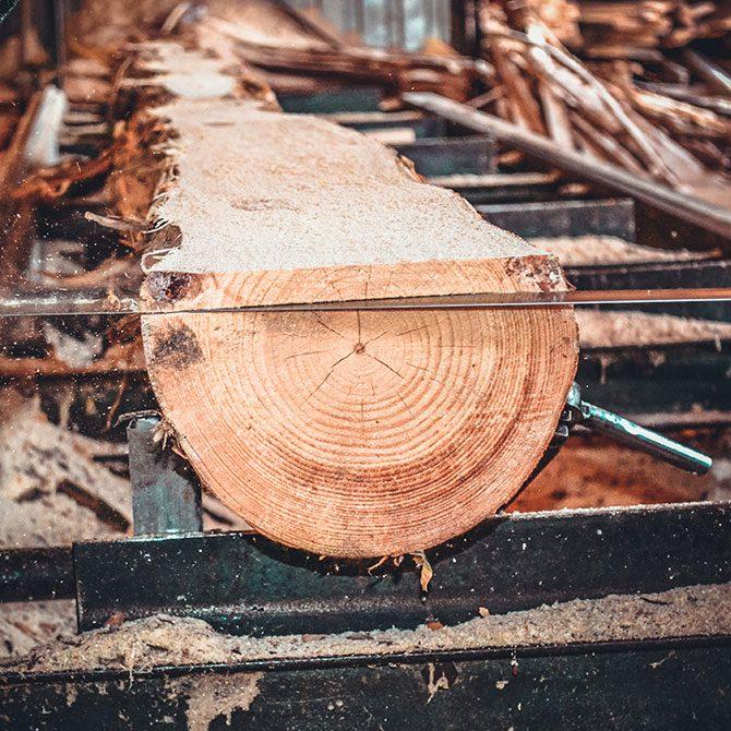 מה זה בכלל שוק העץ?